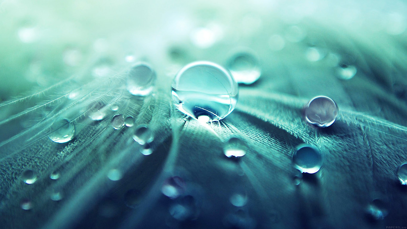 Anime Fall Wallpaper Hd Ml54 Raindrops Nature Leaf Art Green Blue Wallpaper