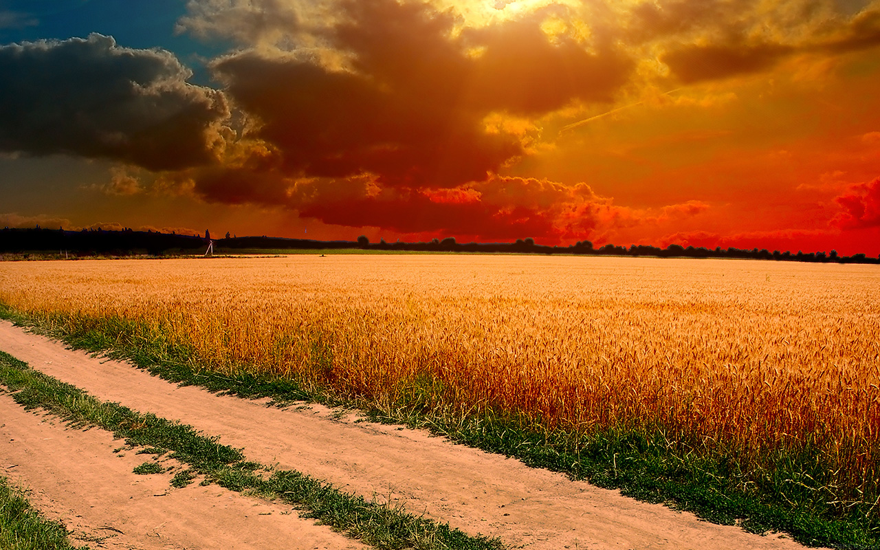 Summer Desktop Wallpaper Hd Ml99 Hot Sunny Day Nature Farm Wallpaper