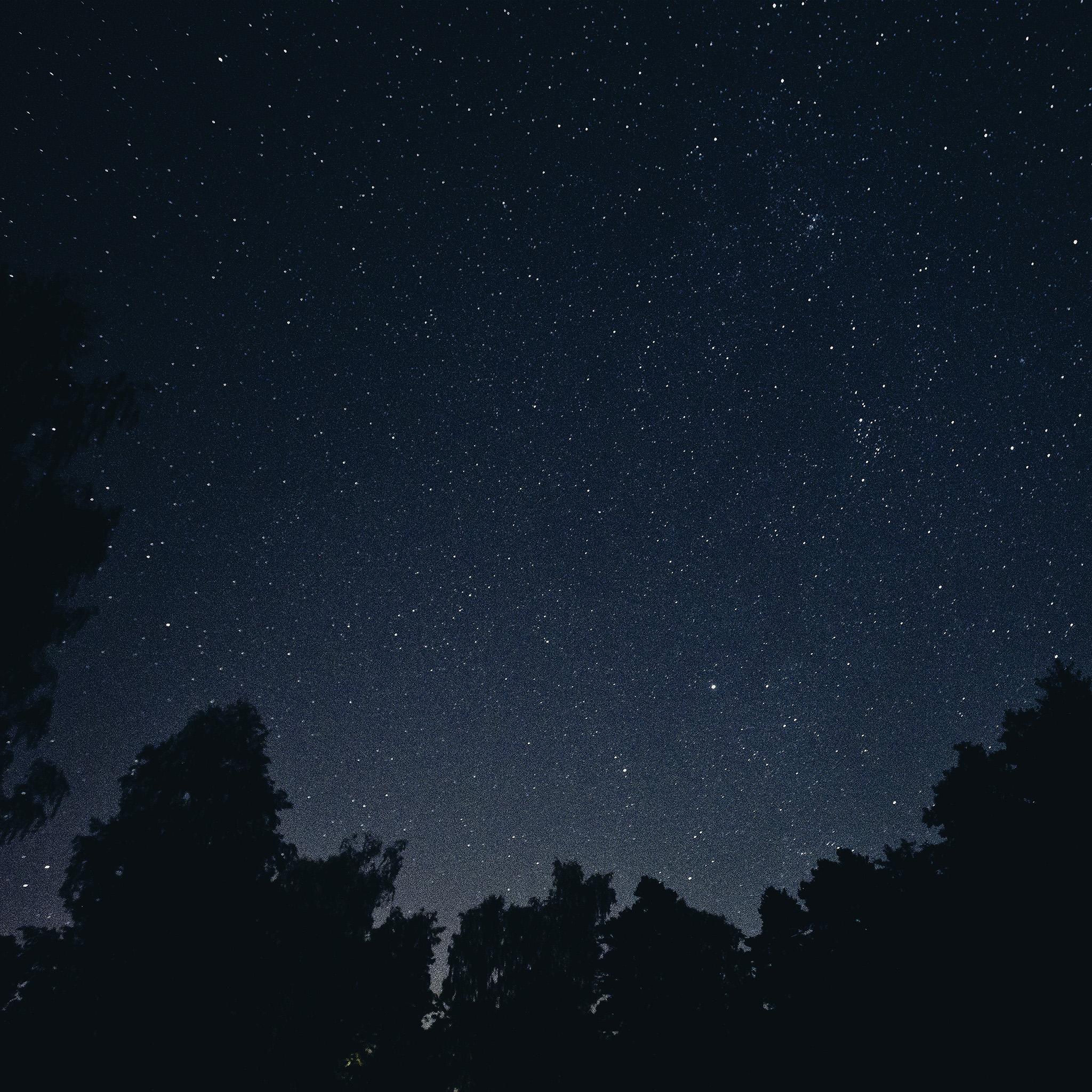Starry Fall Night Wallpaper Wallpapers