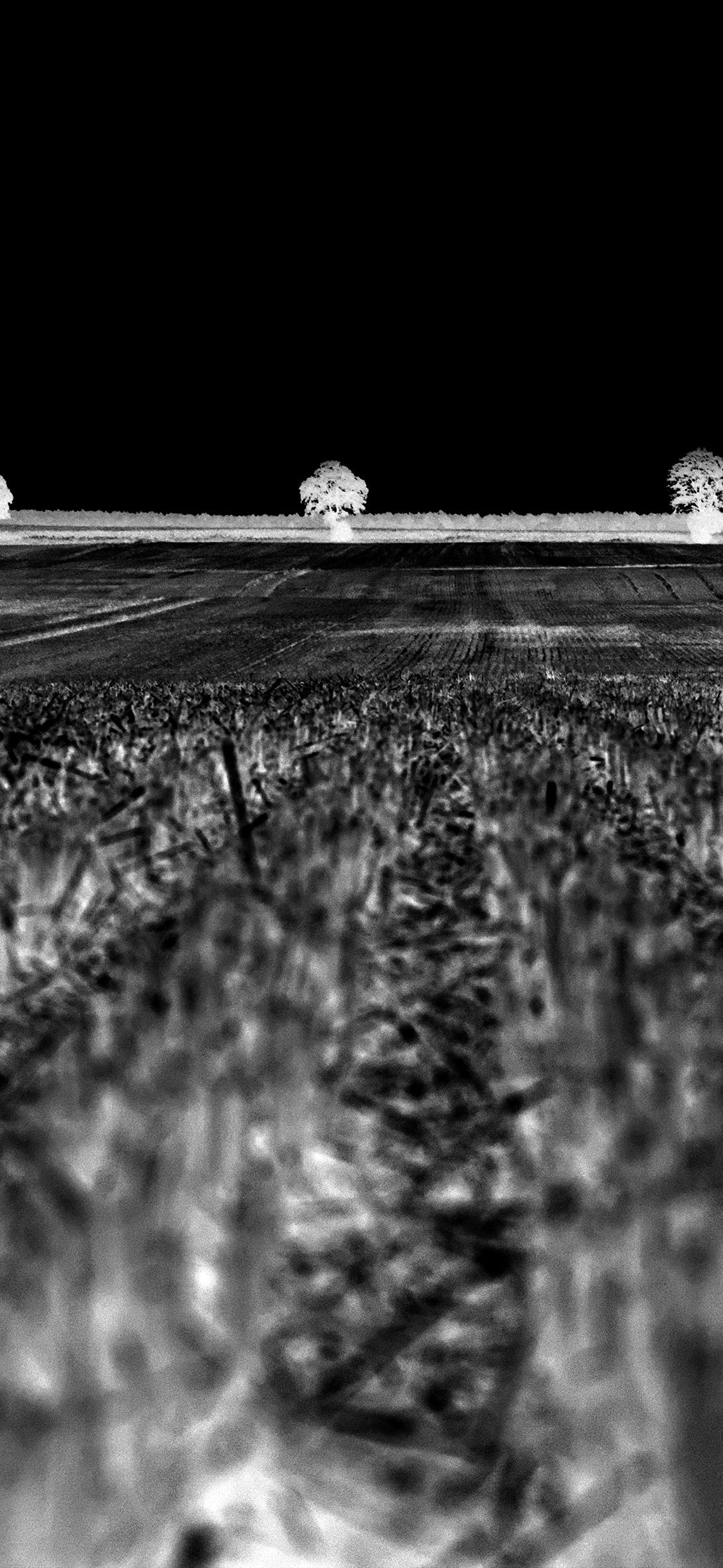 Dark Fall Android Wallpaper Na24 Farm Fall Field Nature Flare Dark Bw Wallpaper