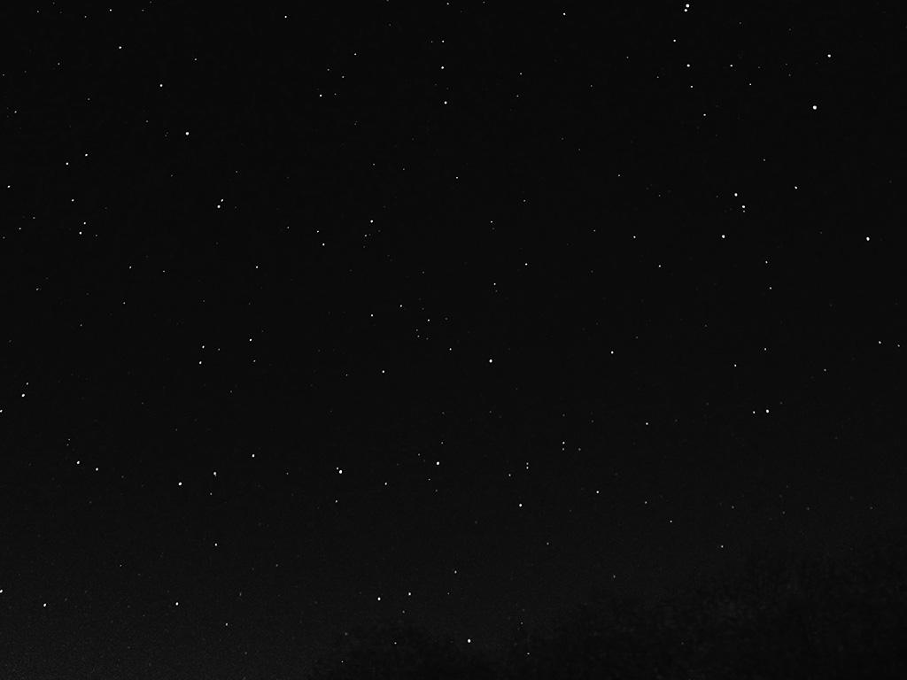 Iphone 4 Fall Wallpaper Nc27 Night Sky Dark Star Lights Tree Nature Bw Dark Wallpaper