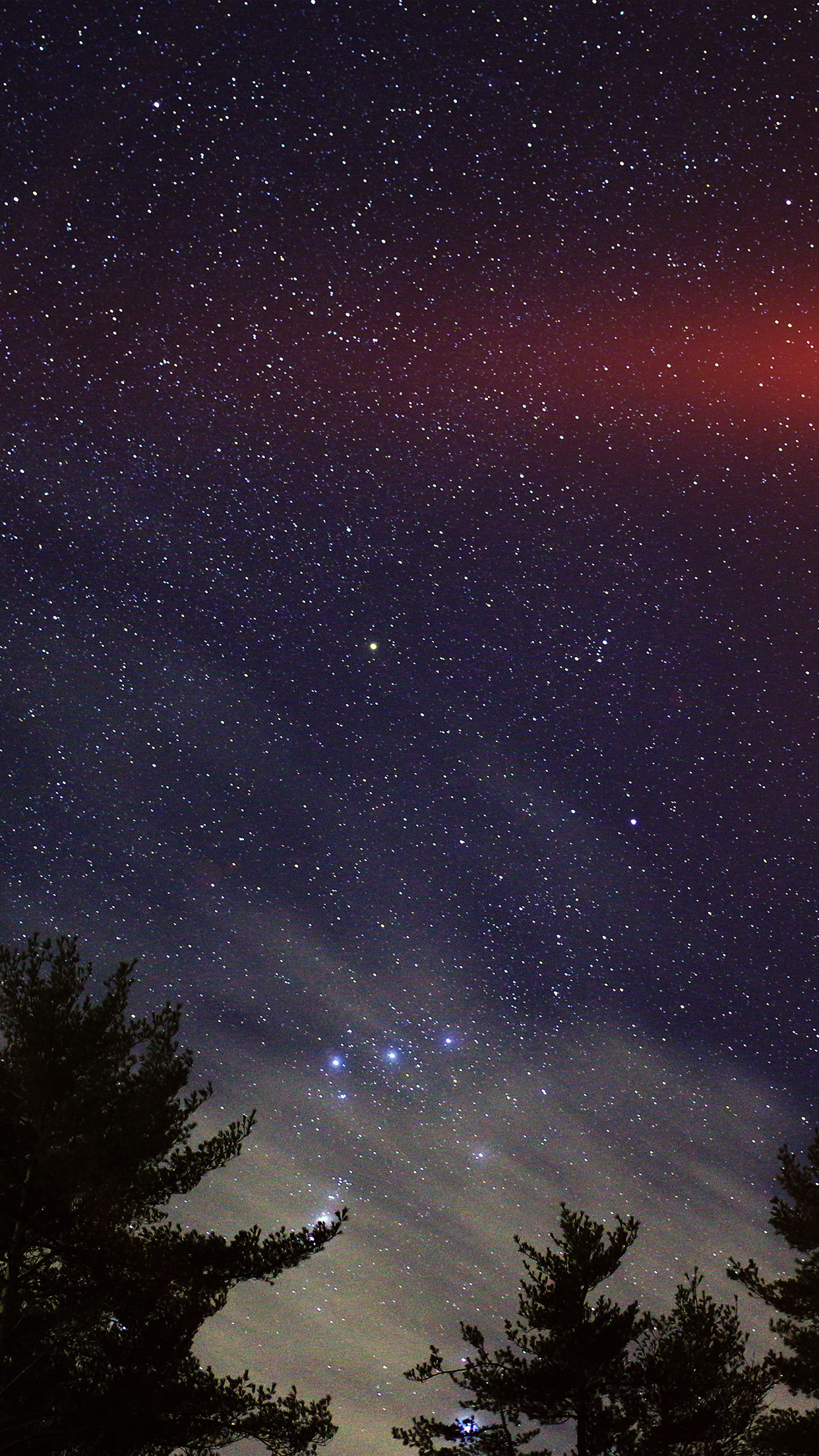Dark Wood Iphone Wallpaper Ni86 Night Sky Star Wood Space Starry Blue Dark Flare