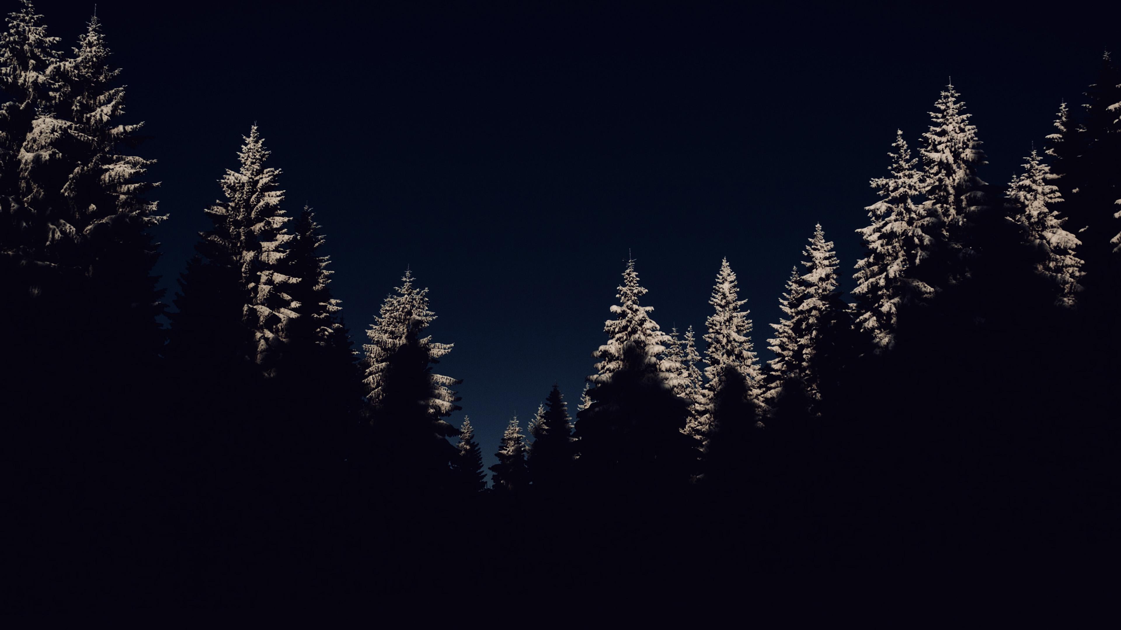 Fall Iphone 7 Plus Wallpaper Nl45 Wood Winter Night Mountain Dark Wallpaper