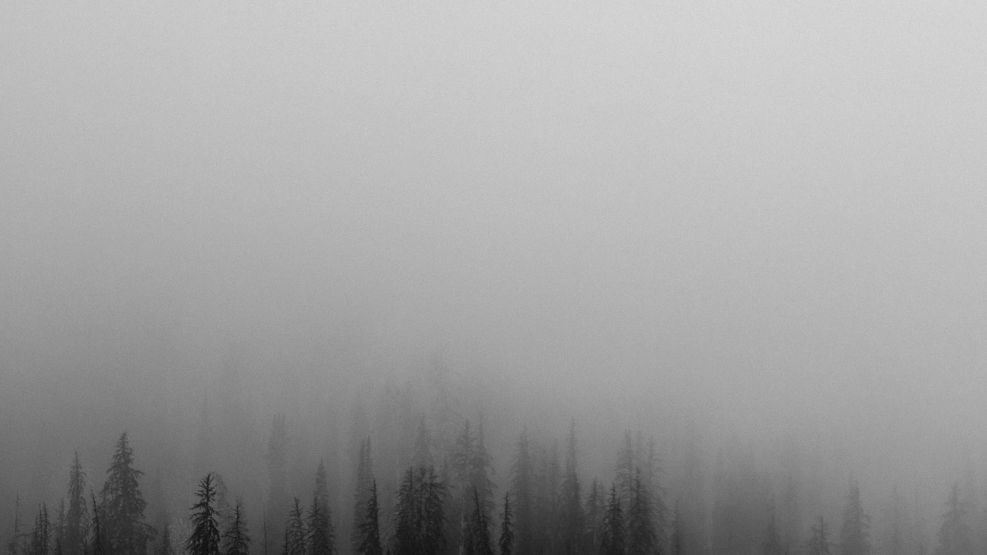Winter Fall Mac Wallpaper No61 Fog Minimal Mountain Wood Nature Wallpaper