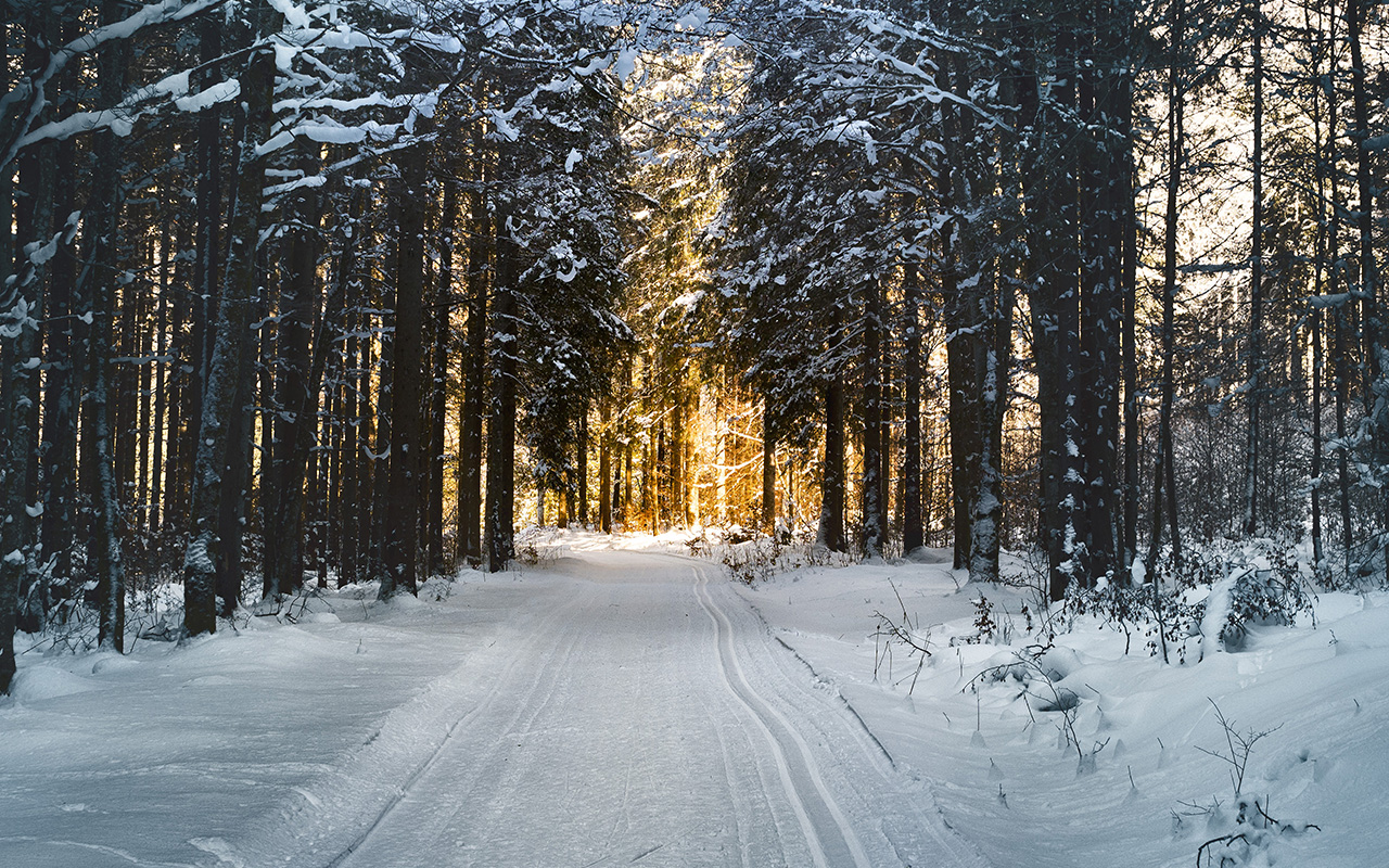 Free Android Fall Wallpaper Nx26 Snow Street Mountain Light Winter Nature Wallpaper