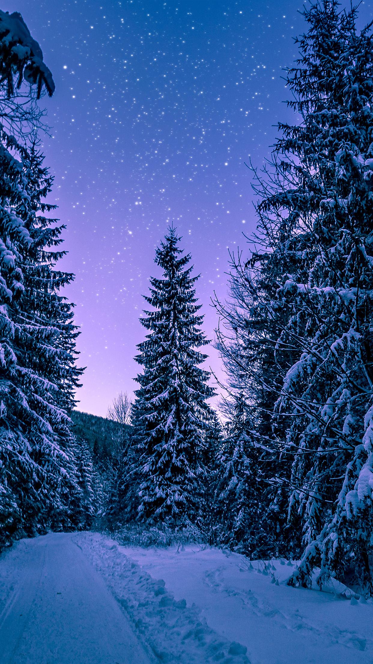 Fall Wallpaper Hd Iphone 5 Nx97 Snow Winter Wood Tree Road Night Nature Wallpaper