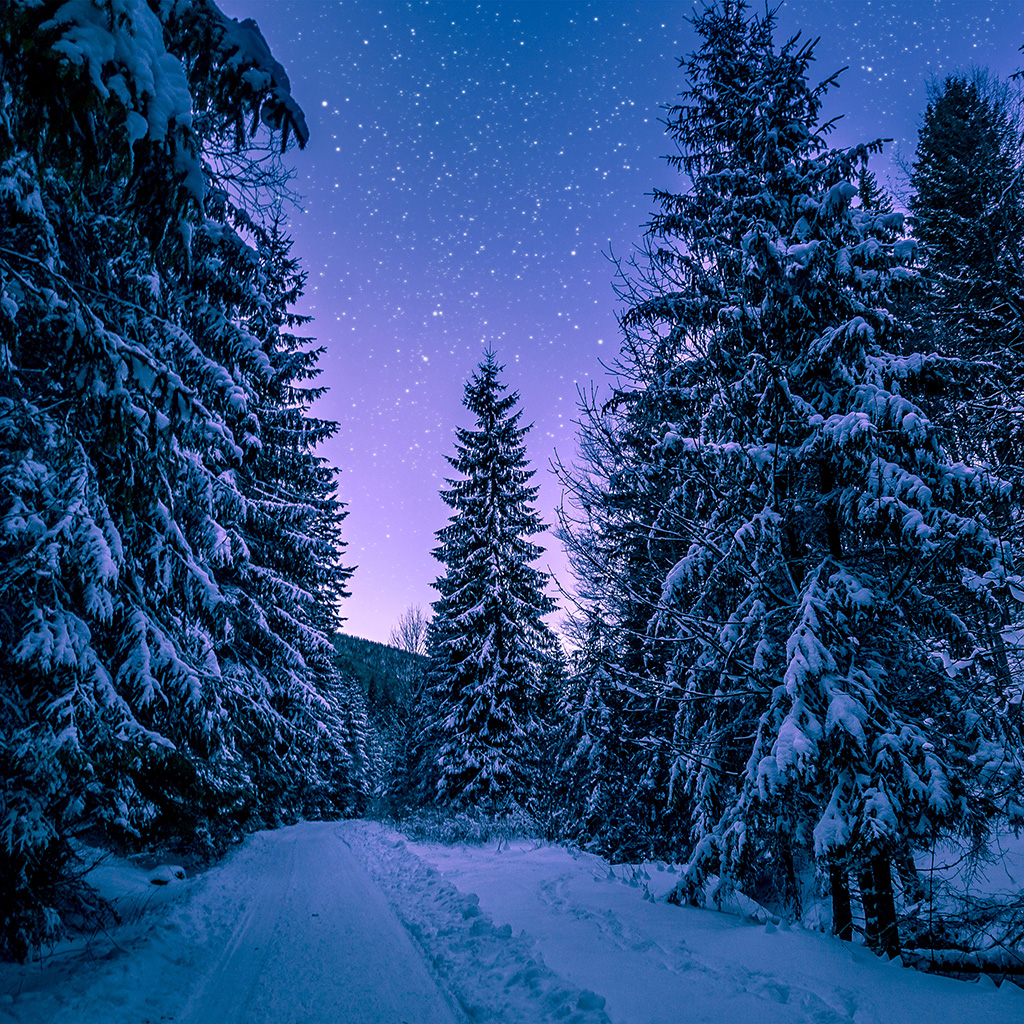 Galaxy S4 Fall Wallpaper Papers Co Android Wallpaper Nx97 Snow Winter Wood Tree