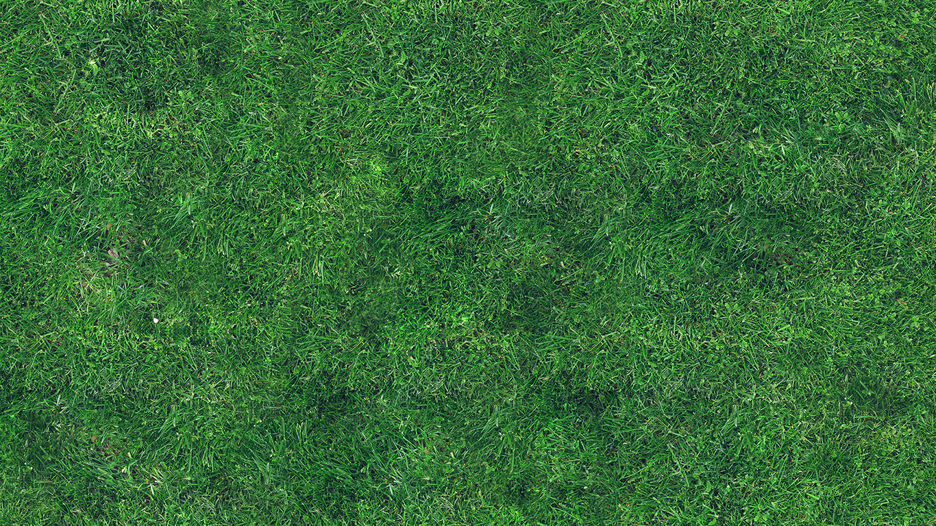 Fall Iphone Wallpaper Pinterest Vg56 Grass Texture Nature Pattern Papers Co