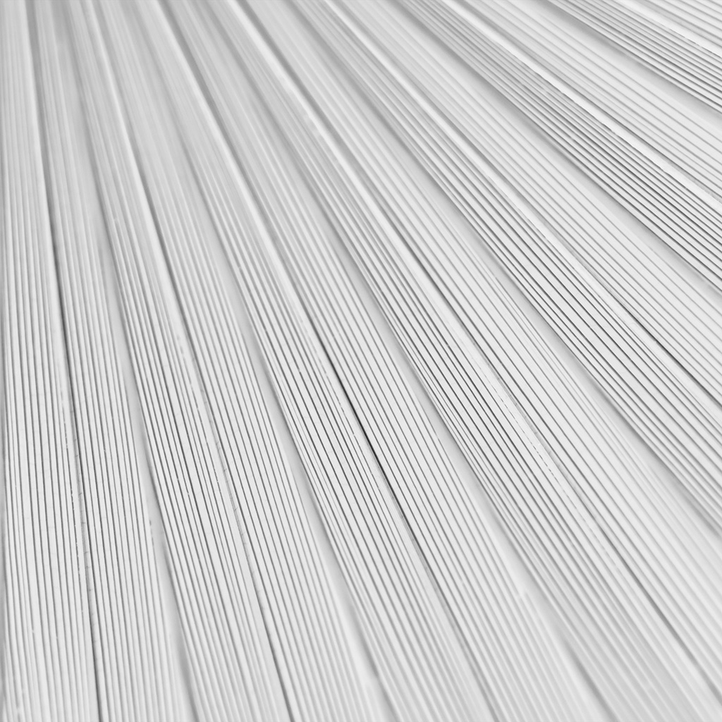   vn32-leaf-white-surface-texture-nature-pattern-bw