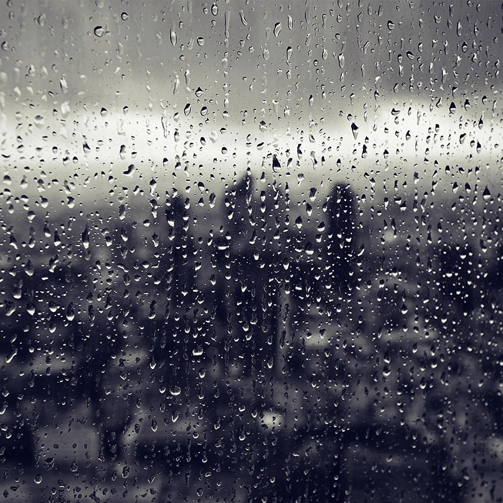 Rainy Fall Wallpaper Ipad Retina