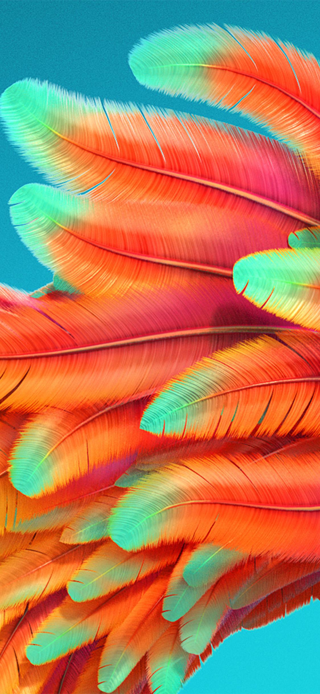 Iphone Se Fall Colors Wallpaper Iphonexpapers Com Apple Iphone Wallpaper Vz54 Bird Color