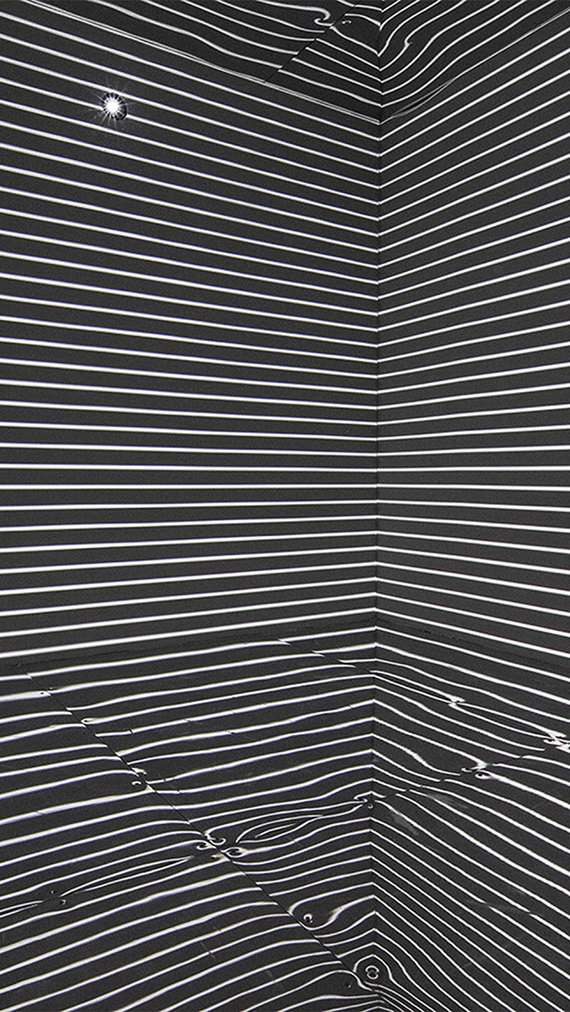 Google Fall Wallpaper Papers Co Iphone Wallpaper Wa04 Crazy Bw Eyecatching