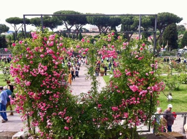 Rome Rose Garden
