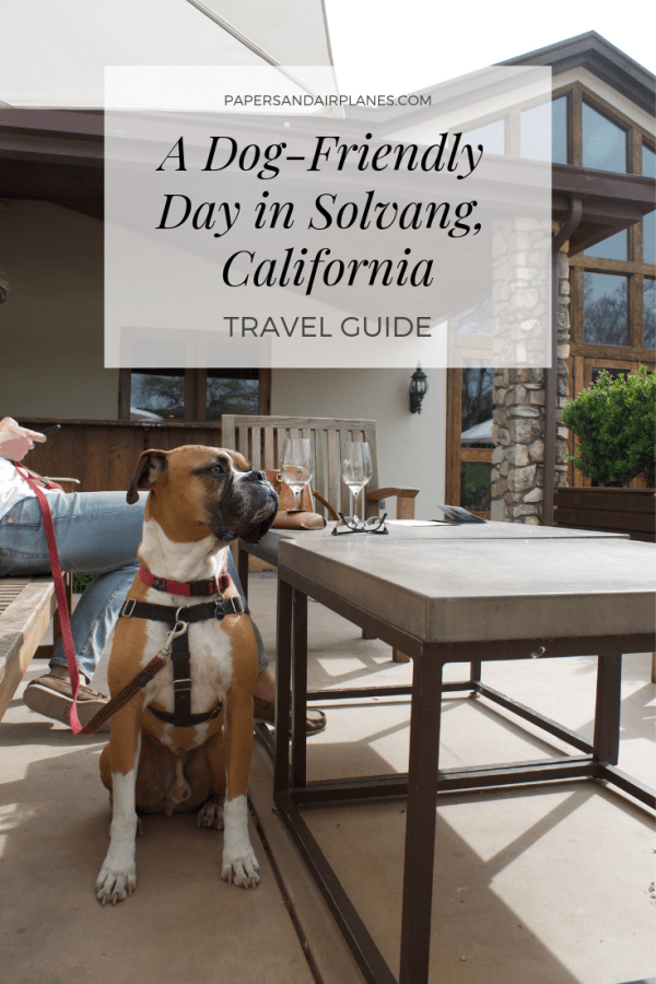 A Dog-Friendly Day in Solvang, California Travel Guide