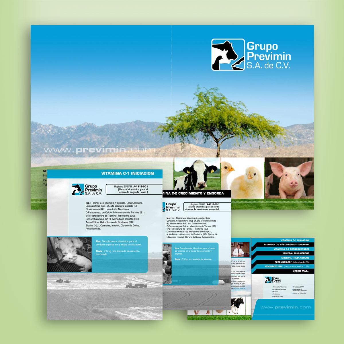 diseño de folder y folletos Previmin