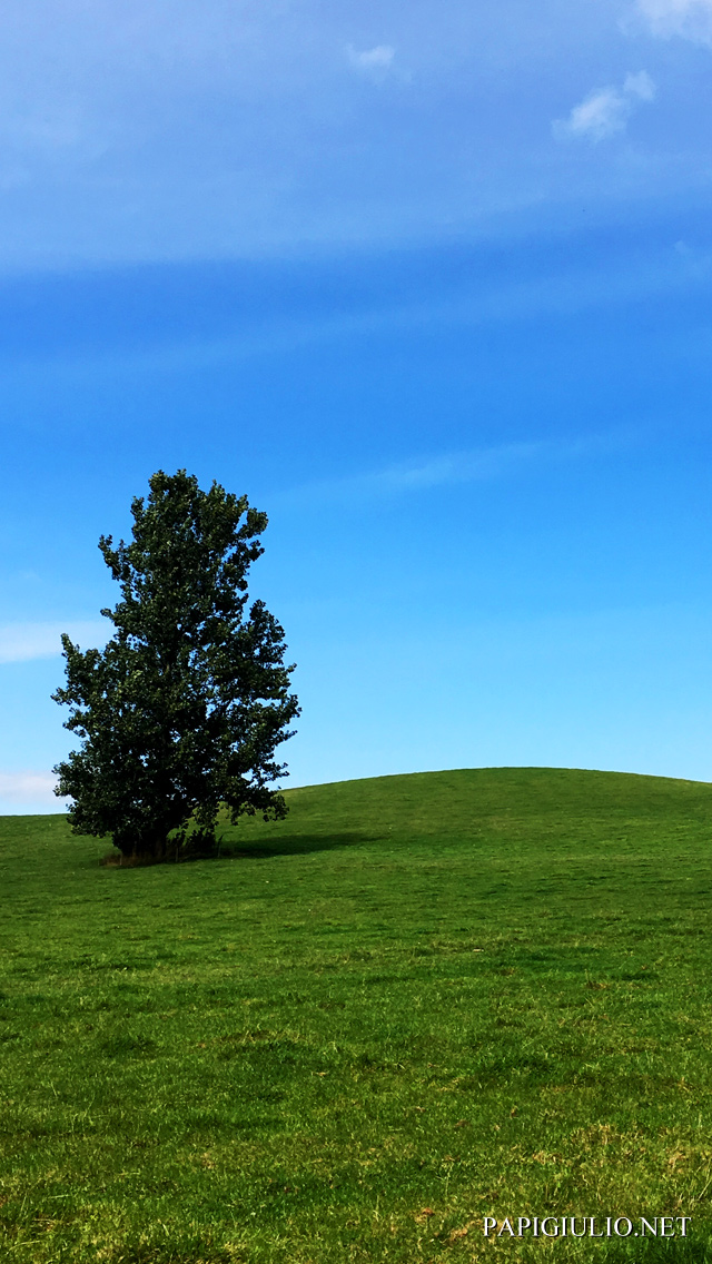 Free Japanese iPhone wallpaper download Hokkaido Hill