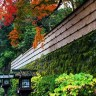 Free Japanese iPhone wallpaper download Kyoto Japan