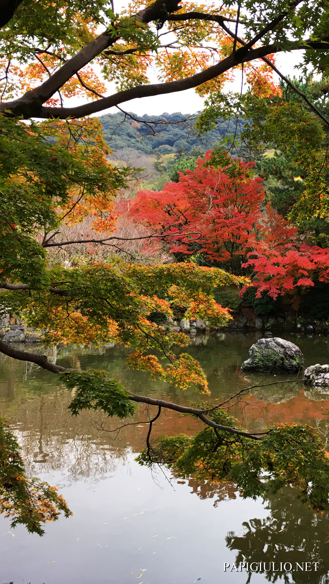 Free Japanese iPhone wallpaper download Kyoto Park