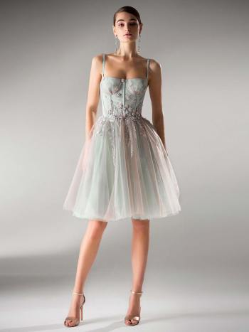 dress with bustier bodice