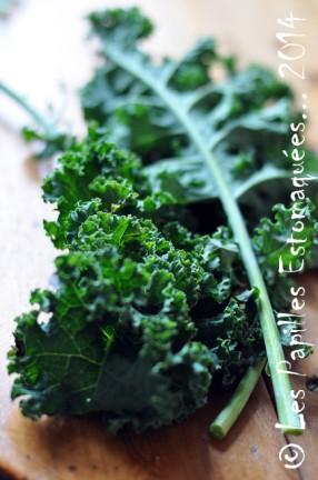 Comment Cuisiner Le Chou Kale : comment, cuisiner, Kale,, Vert,, Frisé, Faire, Papilles, EstomaquéesLes, Estomaquées…