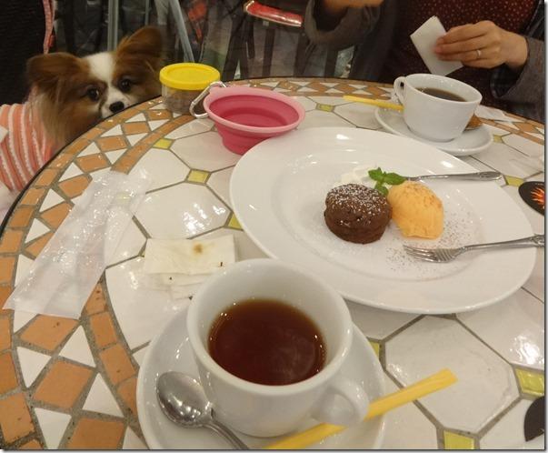 フォンダンショコラとオレンジのシャーベット