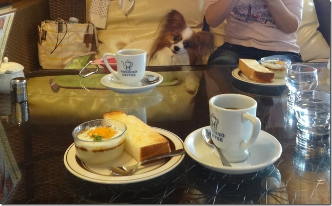 星乃珈琲店でコーヒーとモーニングを前にするアリア
