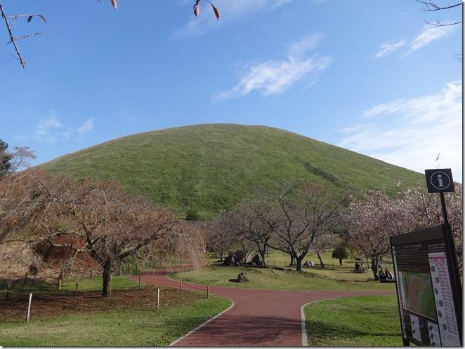 大室山と十月桜