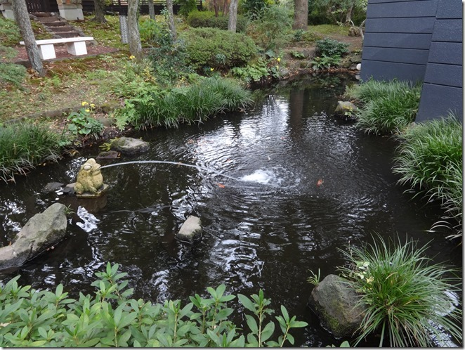 カエルが水を吐く池