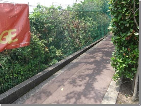 神奈川県横浜市青葉区の愛犬と散歩できるあざみ野ガーデンズ内のペット(犬)と食事できるベーカリーレストラン『ベルベ』横の道アディダスフットサルパークあざみ野に続く小道