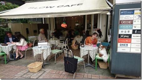 みなとみらい線元町・中華街駅からすぐの元町のおしゃれなカフェスローカフェで愛犬パピヨンのアリアと休憩中