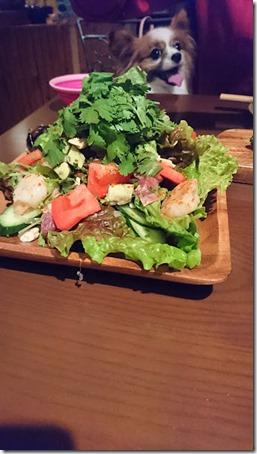 神奈川県藤沢市の藤沢駅そばにあるペット同伴OKのバーのバルゴリラの魚介とアボカドのパクチーサラダ