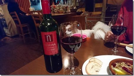 神奈川県藤沢市の藤沢駅そばにあるペット同伴OKのバーのバルゴリラの赤ワイン