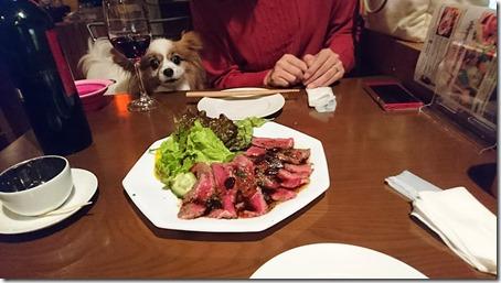 神奈川県藤沢市の藤沢駅そばにあるペット同伴OKのバーのバルゴリラのオーストラリア産牛ランプステーキを見つめるアリア