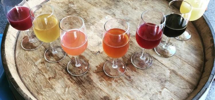 Conhecendo Estilos #3: American Wild Ale