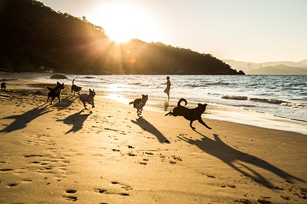 Leandro Maceira Fotografia Viagem Os Lugares de Cada Um