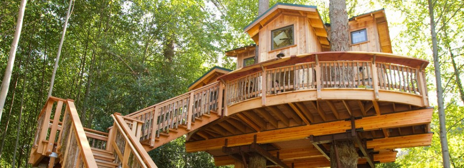 Awesome Treehouse Design Ideas Featured