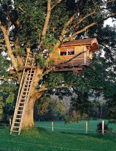 Awesome Treehouse Masters Design Ideas 106