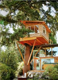 Awesome Treehouse Masters Design Ideas 13