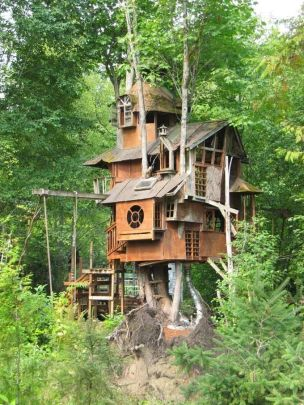 Awesome Treehouse Masters Design Ideas 16