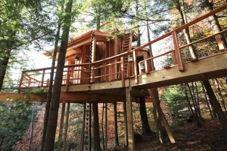 Awesome Treehouse Masters Design Ideas 21