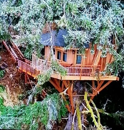 Awesome Treehouse Masters Design Ideas 31