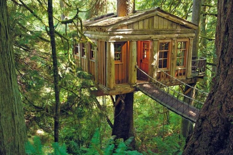 Awesome Treehouse Masters Design Ideas 39