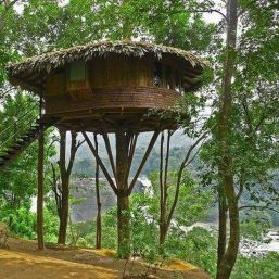 Awesome Treehouse Masters Design Ideas 41
