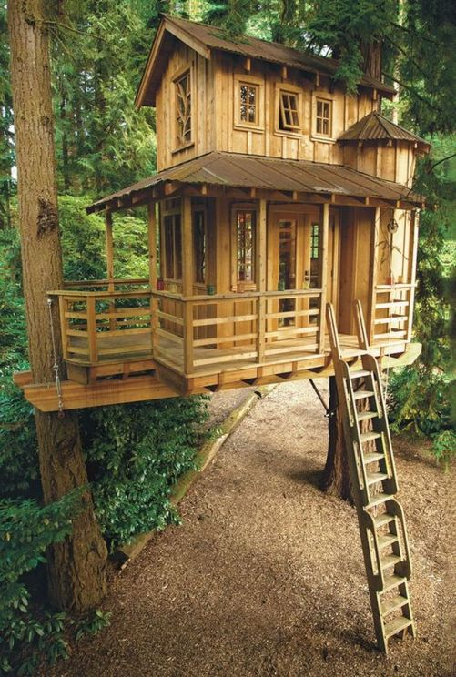 Awesome Treehouse Masters Design Ideas 52