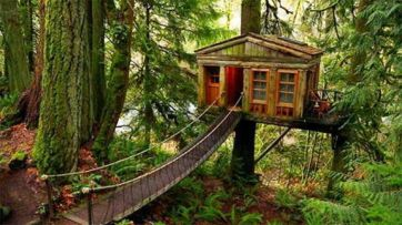 Awesome Treehouse Masters Design Ideas 6