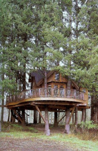 Awesome Treehouse Masters Design Ideas 62