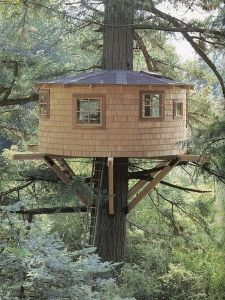 Awesome Treehouse Masters Design Ideas 94
