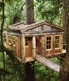 Awesome Treehouse Masters Design Ideas 97