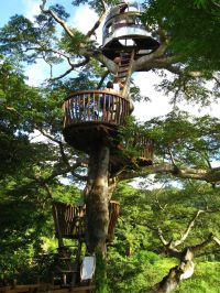 Awesome Treehouse Masters Design Ideas 98