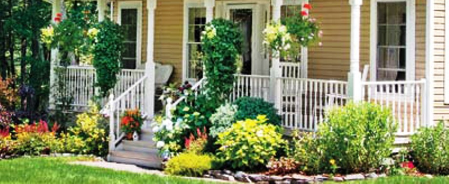 Curb Appeal Foundation Plantings
